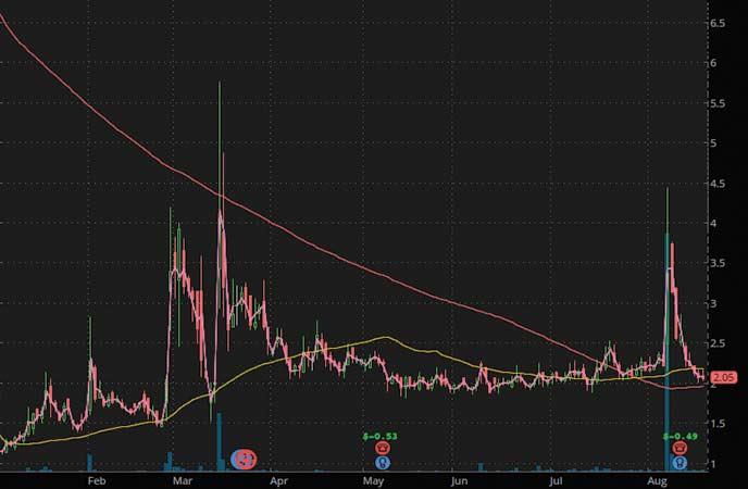 top penny stocks to buy Opgen Inc. (OPGN stock chart)