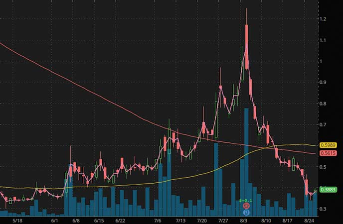 top penny stocks to watch CHF Solutions Inc. (CHFS stock chart)