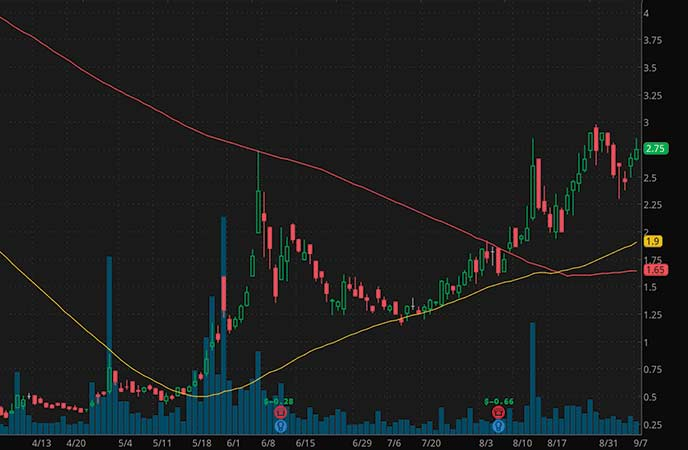 ecommerce penny stocks to watch Party City Holdco (PRTY stock chart)