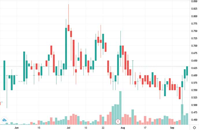 gold penny stocks to watch Freeman Gold Corp. (FMAN stock chart)