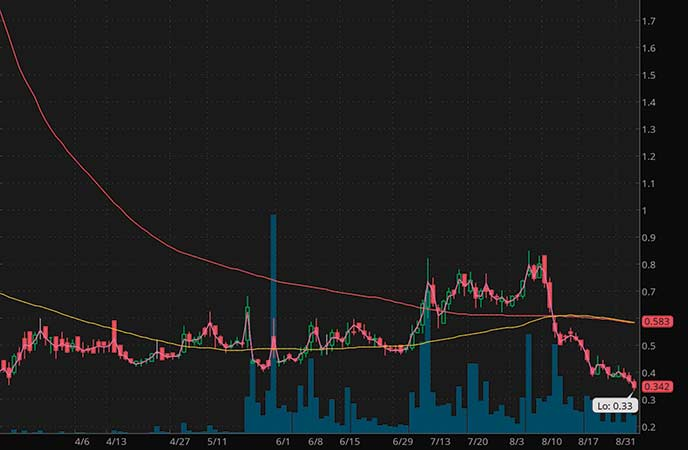 mushroom penny stocks to watch Jaguar Health (JAGX stock chart)