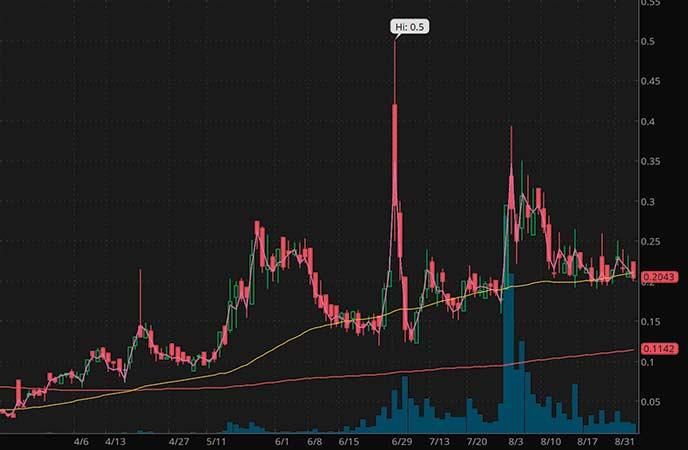 mushroom penny stocks to watch Revive Therapeutics (RVVTF stock chart)