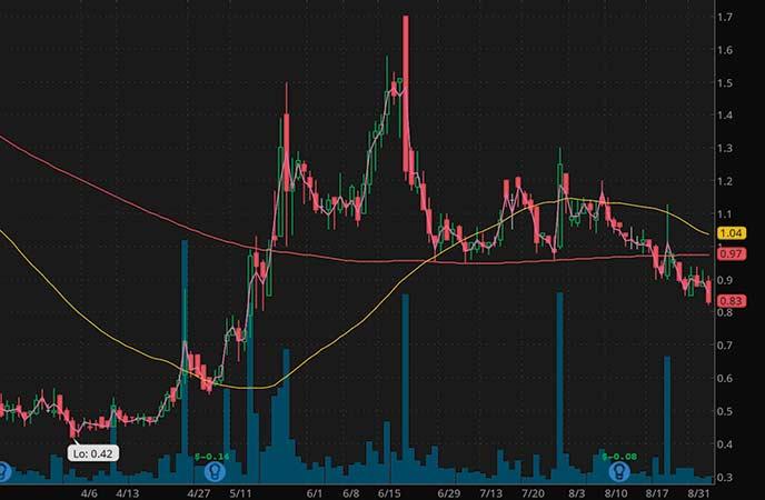 mushroom penny stocks to watch Seelos Therapeutics (SEEL stock chart)