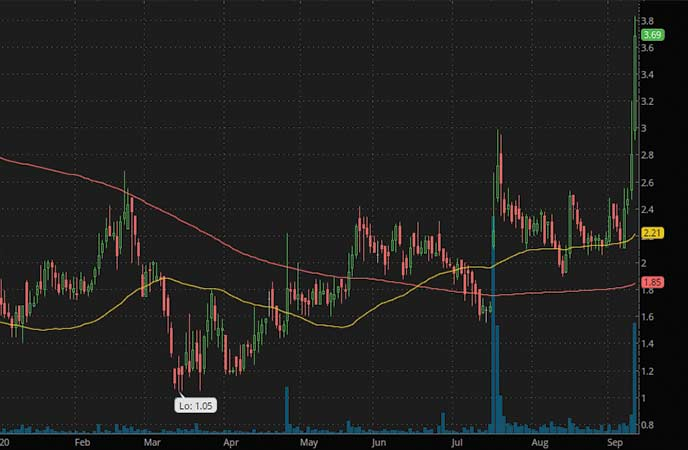 penny stocks to buy Checkpoint Therapeutics (CKPT stock chart)