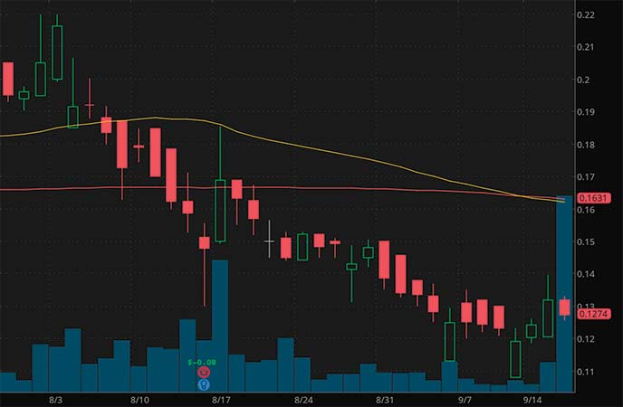 penny stocks to watch Enservco Corp. (ENSV stock chart)