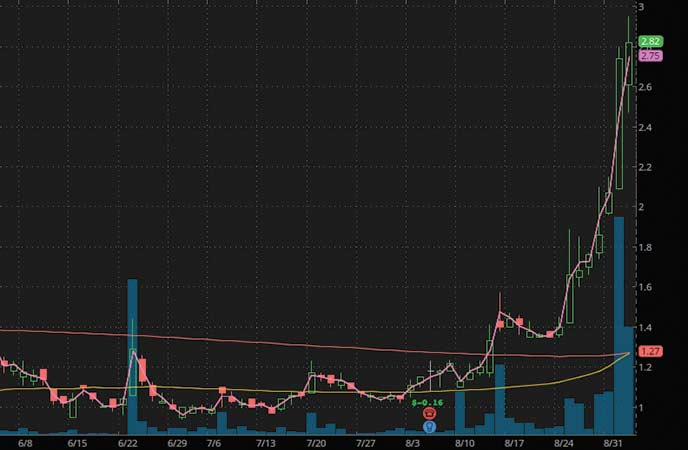 penny stocks to watch Evogene Ltd. (EVGN stock chart)