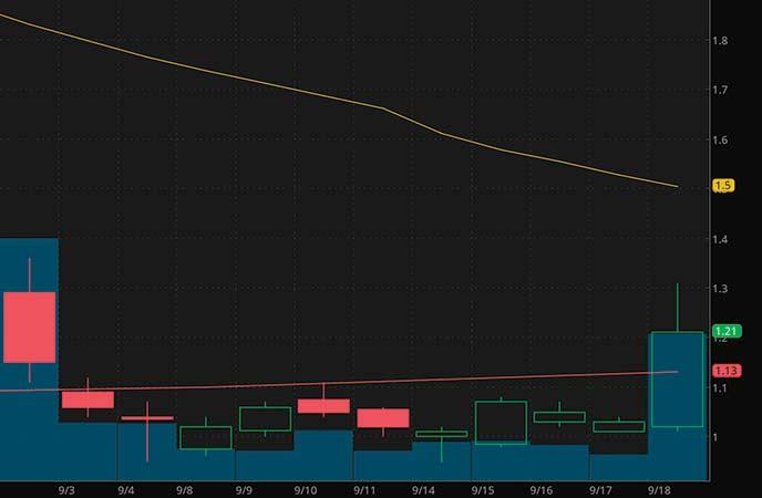 penny stocks to watch Genius Brands (GNUS stock chart)