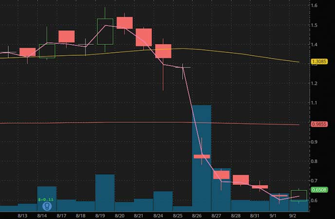 penny stocks to watch Outlook Theraoeutics Inc. (OTLK stock chart)