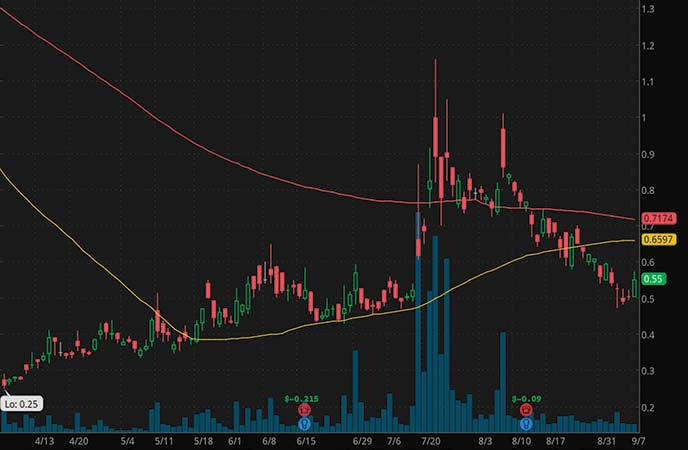 penny stocks to watch September Bionano Genomics Inc. (BNGO stock chart)