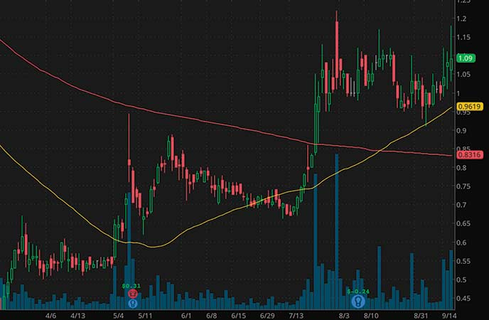 penny stocks to watch Sesen Bio Inc. (SESN stock chart)