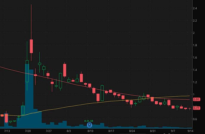 penny stocks under $1 Tonix Pharmaceuticals Holding Corp. (TNXP stock chart)