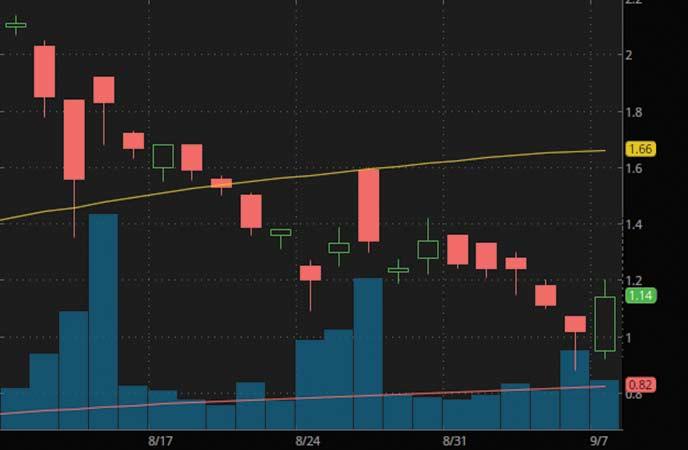 penny stocks under 3 dollars to watch Heat Biologics (HTBX stock chart)