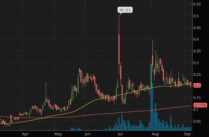 penny stocks under 3 dollars to watch Revive Therapeutics (RVVTF stock chart)