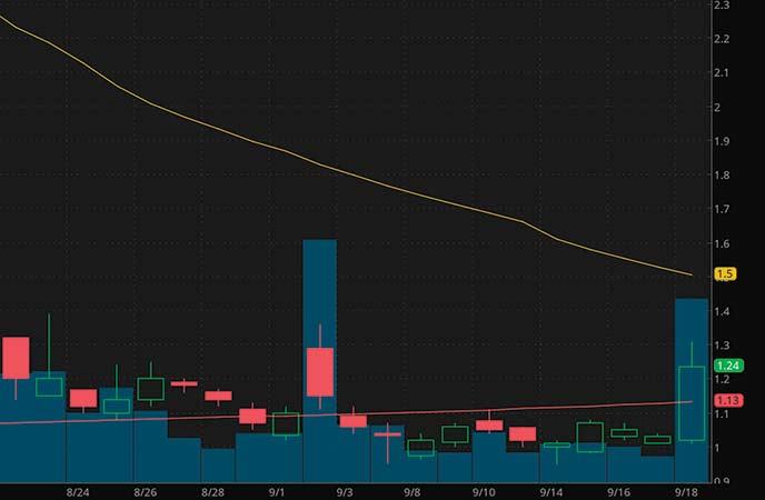 pre market movers penny stocks Genius Brands International Inc. (GNUS stock chart)