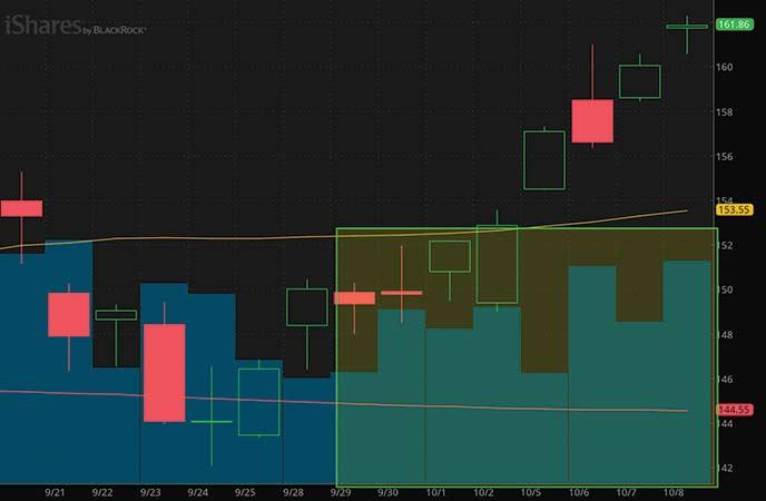 IWM stock ETF chart
