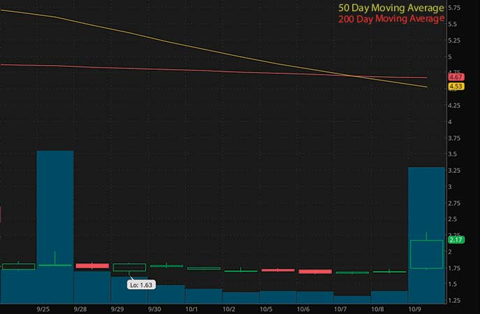 best penny stocks to buy now avoid Vaccinex Inc. (VCNX stock chart)