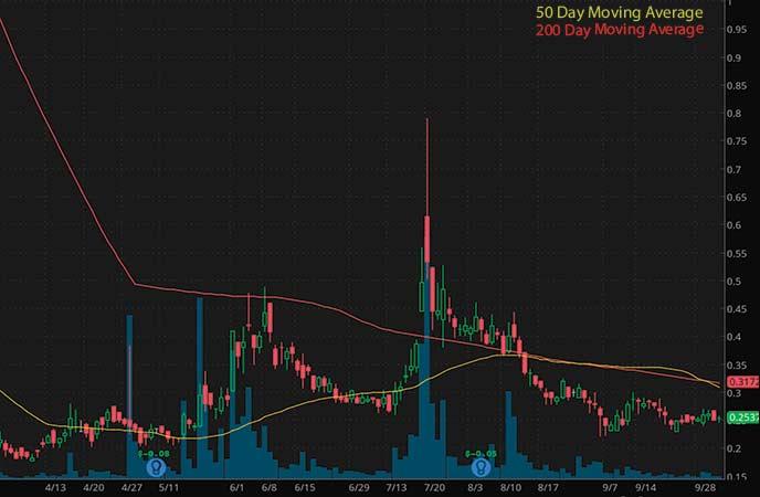 best penny stocks to watch premarket Intec Pharma Ltd. (NTEC stock chart)