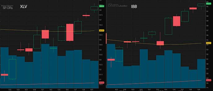 biotech penny stocks to watch XLV vs IBB
