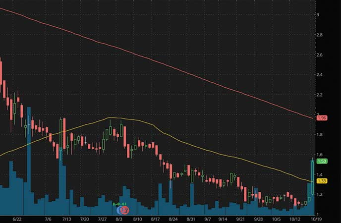 epicenter penny stocks to buy avoid Pioneer Drive Shack Inc. (DS stock chart)