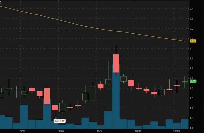 epicenter penny stocks to buy avoid Pioneer Muscle Maker Inc. (GRIL stock chart)