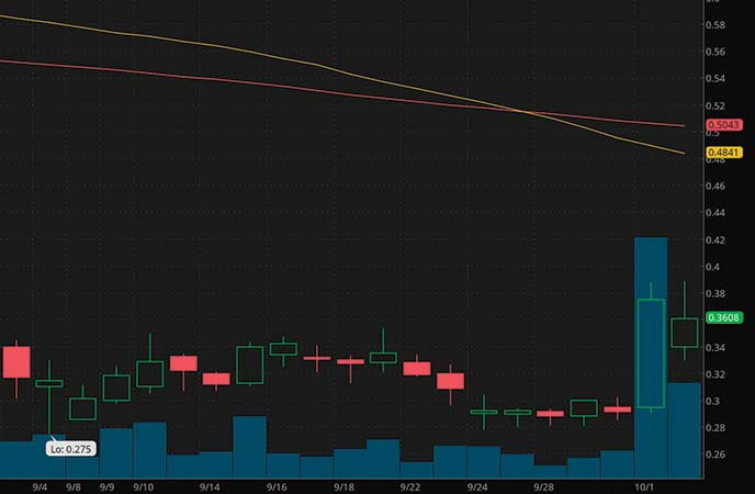 penny stocks on robinhood CHF Solutions Inc. (CHFS stock chart)