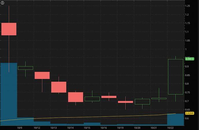 penny stocks on robinhood to buy under1 dollar Orbital Energy Group Inc. (OEG stock chart)