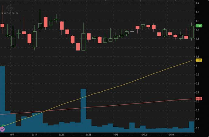 penny stocks to buy according to analysts Sunesis Pharmaceuticals (SNSS stock chart)
