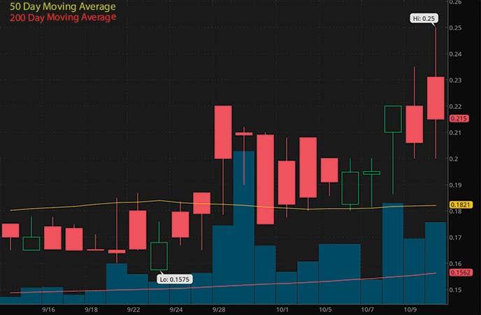 penny stocks to watch biotech GT Biopharma Inc. (GTBP stock chart)