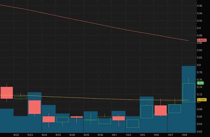 top penny stocks to watch Hexo Corp. (HEXO stock chart)