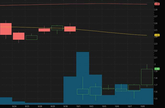 top penny stocks to watch Selecta Therapeutics (SELB stock chart)
