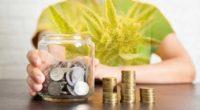 best marijuana penny stocks to buy right now
