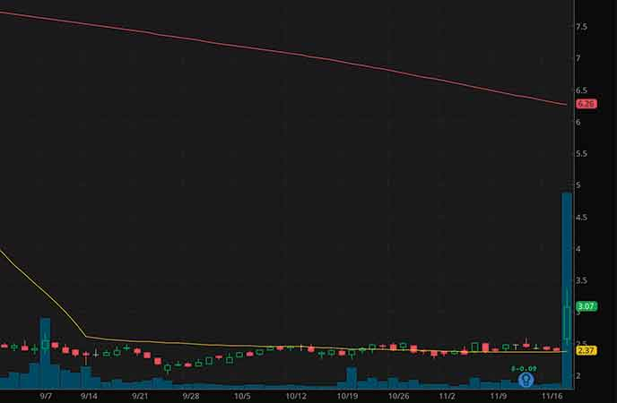 best penny stocks to watch today BELLUS Health Inc. (BLU stock chart)