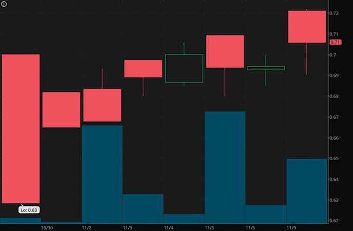 hot penny stocks to watch november 2020 Havn Life Sciences (HAVLF stock chart)