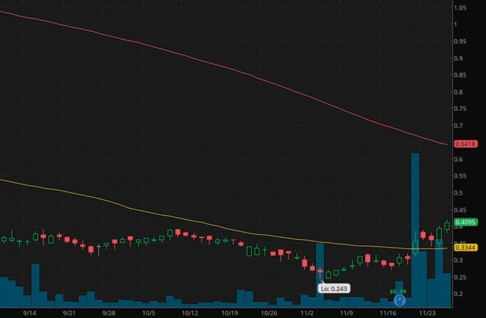 robinhood penny stocks to buy under $1 Check-Cap Ltd. (CHEK stock chart)