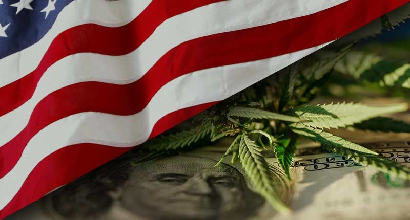 top US marijuana penny stocks to watch right now