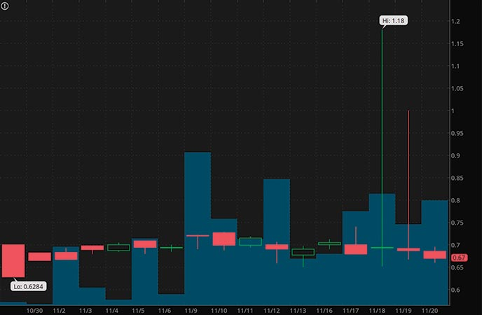 vice penny stocks to watch Havn Life Sciences (HAVLF stock chart)