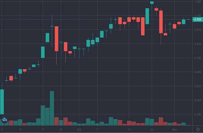 vice penny stocks to watch Havn Life Sciences (HAVN stock chart)