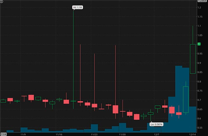 biotech penny stocks to watch Havn Life Sciences (HAVLF stock chart)