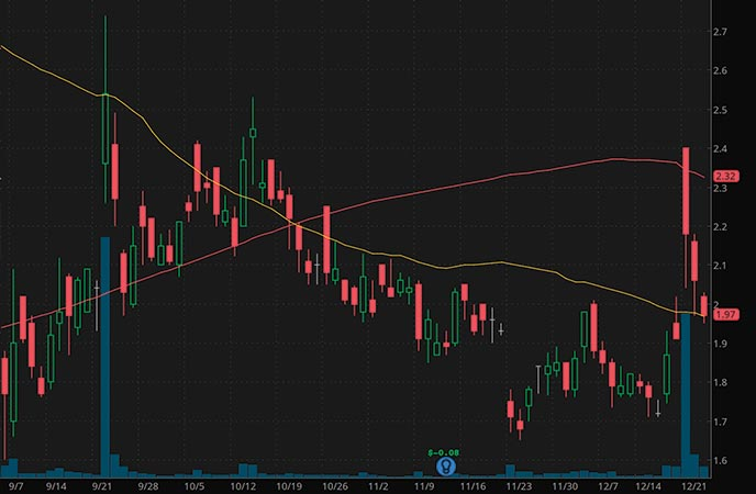 hot penny stocks to buy AIM ImmunoTech AIM stock chart