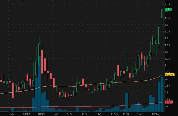 hot penny stocks to watch Farmmi Inc. FAMI stock chart