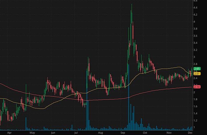 penny stocks to buy according to analysts Checkpoint Therapeutics Inc. (CKPT stock chart)