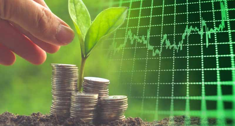 The evergreen environment also become safe by the stock exchanges