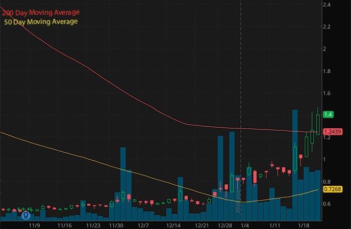 hot penny stocks to watch InVivo Therapeutics NVIV stock chart