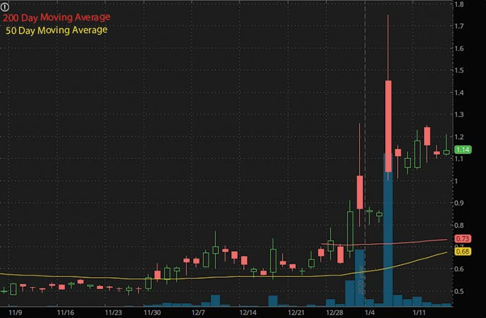 mushroom penny stocks to watch Aikido Pharma Inc. AIKI stock chart