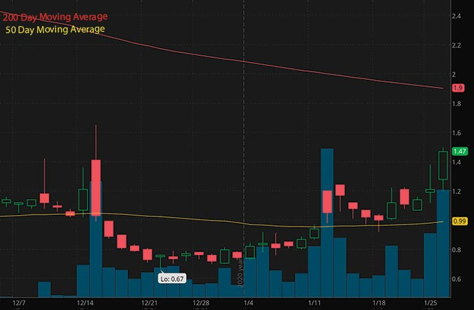 robinhood penny stocks to buy sell Timber Pharmaceuticals TMBR stock chart