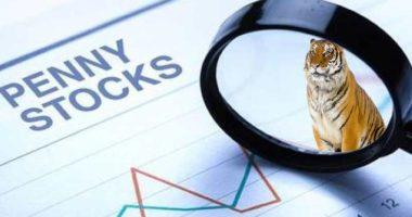 zomedica penny stocks to watch