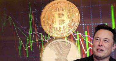 bitcoin penny stocks elon musk tesla