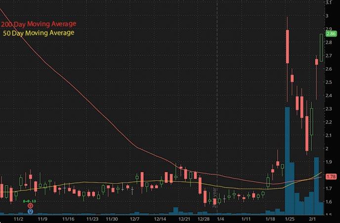 high volume penny stocks to buy Vyne Therapeutics VYNE stock chart