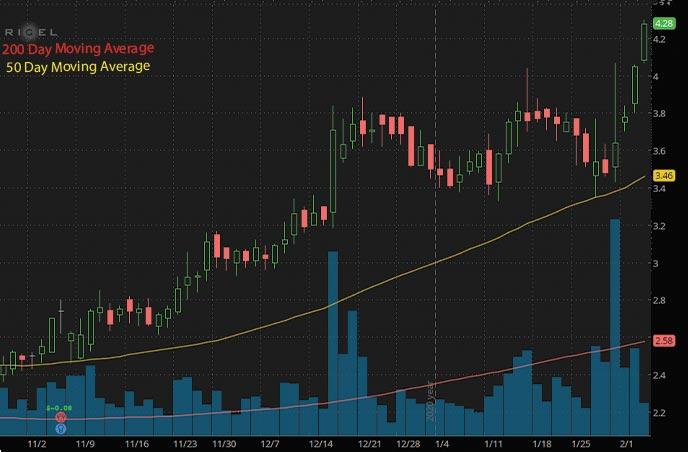 high volume penny stocks to buy rigel pharmaceuticals RIGL stock chart