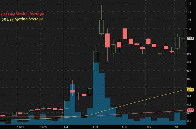 hot penny stocks to watch Zomedica ZOM stock chart